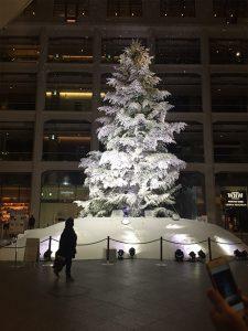 tree03