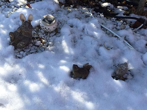 雪の中のウサギさんとリスさん
