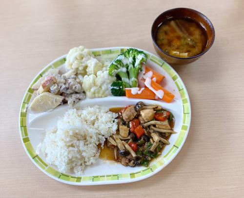 鶏肉と色どり野菜の甘酢炒め